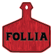 Follia NYC restaurant